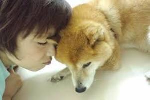 犬の愛情.jpg
